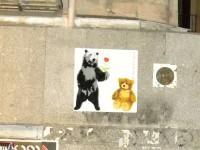 osos calle del barco